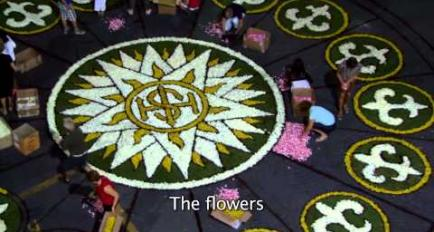Embedded thumbnail for Video Flowers of Riviera