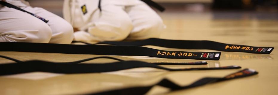 Karate (Ph: Pixabay)