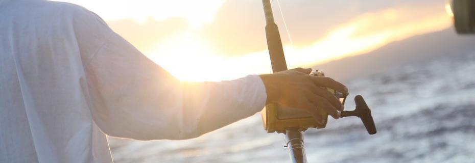 Pesca (Ph: Pixabay)