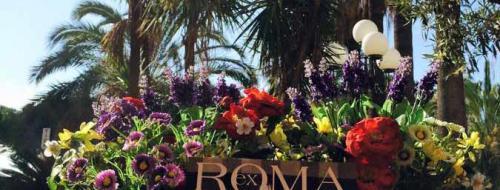 Ex Roma