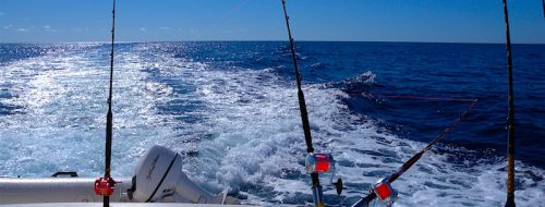 Gara open di pesca a traina_6 settembre 2020