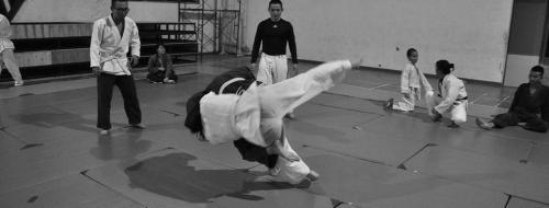 Judo (Ph: Pixabay)