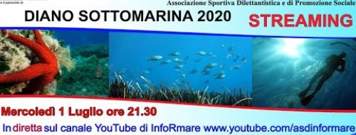 Embedded thumbnail for Video Diano SottoMarina