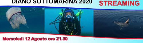 Diano SottoMarina_12 agosto 2020