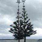 Natale tutto l'anno (Ph. Paola Cardin)