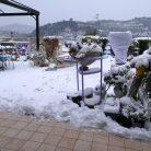 Neve nel 2007 (Ph. Lorenzo Coppero)