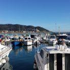 Veduta dal porto di Diano Marina (Ph. Giuliano Tavernelli)