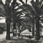 Giardinetti e via Aurelia (Ph: New Cartoline Liguria)