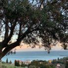 Relax alle spalle di Diano Marina (Ph. Alessio Recli)