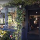 Bar Eden (Ph: Peter Addor)