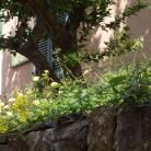 Località Diano Gorleri (Ph: Provincia di Savona)