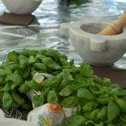Aromatica - Profumi e Sapori della Riviera Ligure