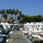Gare di pesca (Ph: Comune di Diano Marina)